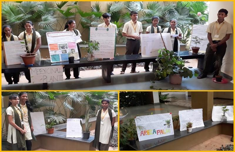 Plant-Exhibition-02