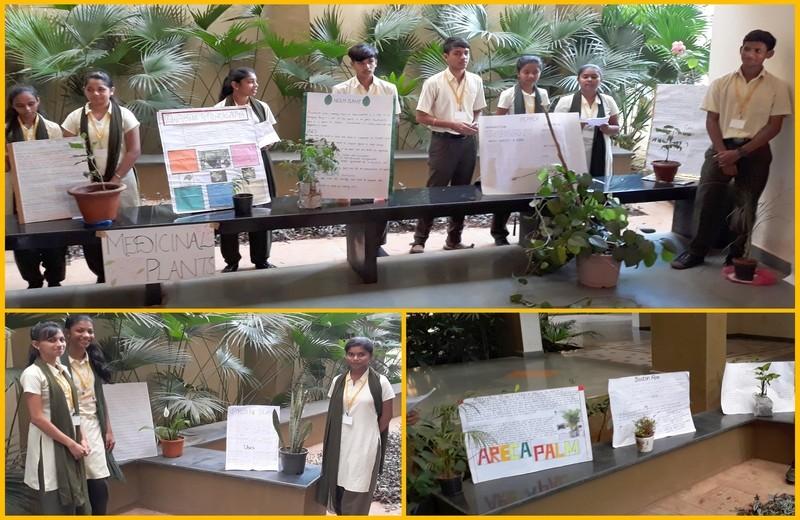 Plant-Exhibition-03