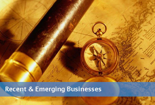 Recent & Emerging Businesses