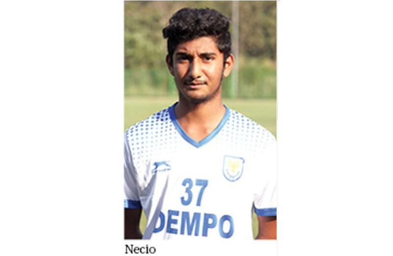 Necio-Fernandes