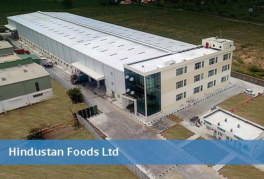 Hindustan Foods Limited